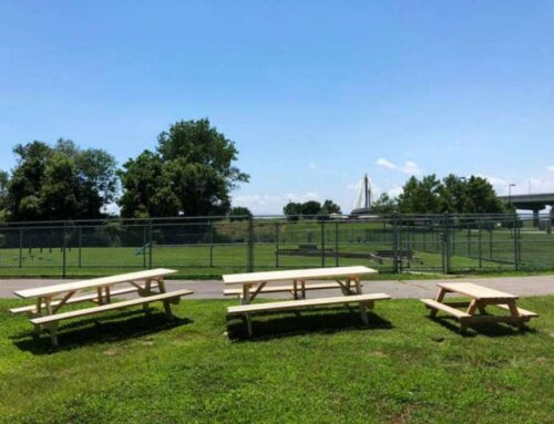 Artists sought for dog park picnic tables